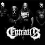entrails-2014