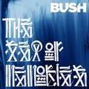 Bush - Sea of memories