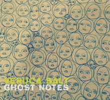 veruca salt ghost notes lyrics