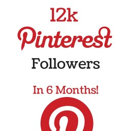 how i gained 12k pinterest followers rock and drool