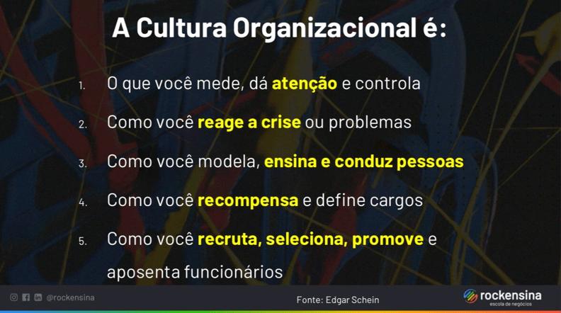 Cultura Organizacional - 5 fatores importantes - Edgar H. Schein