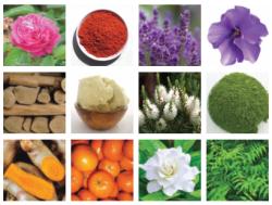 natural soap ingredients