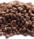 ambrette absolute oil seeds