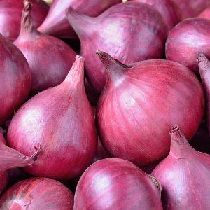 essential oil onion