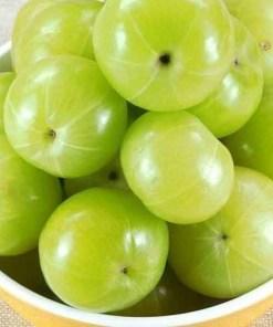 Amla Oil Fruit
