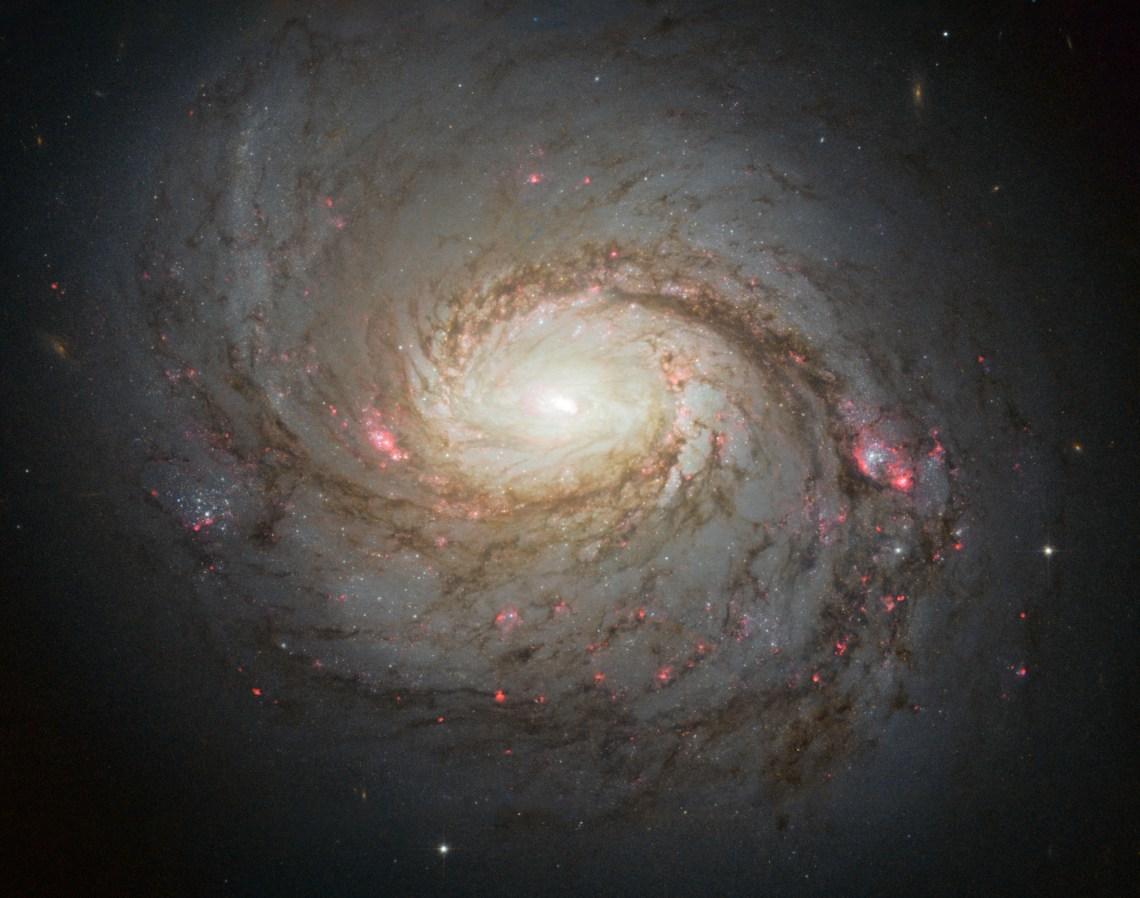 HUBBLE'S TOP 100 • #48 •Credit: NASA, ESA & A. van der Hoeven