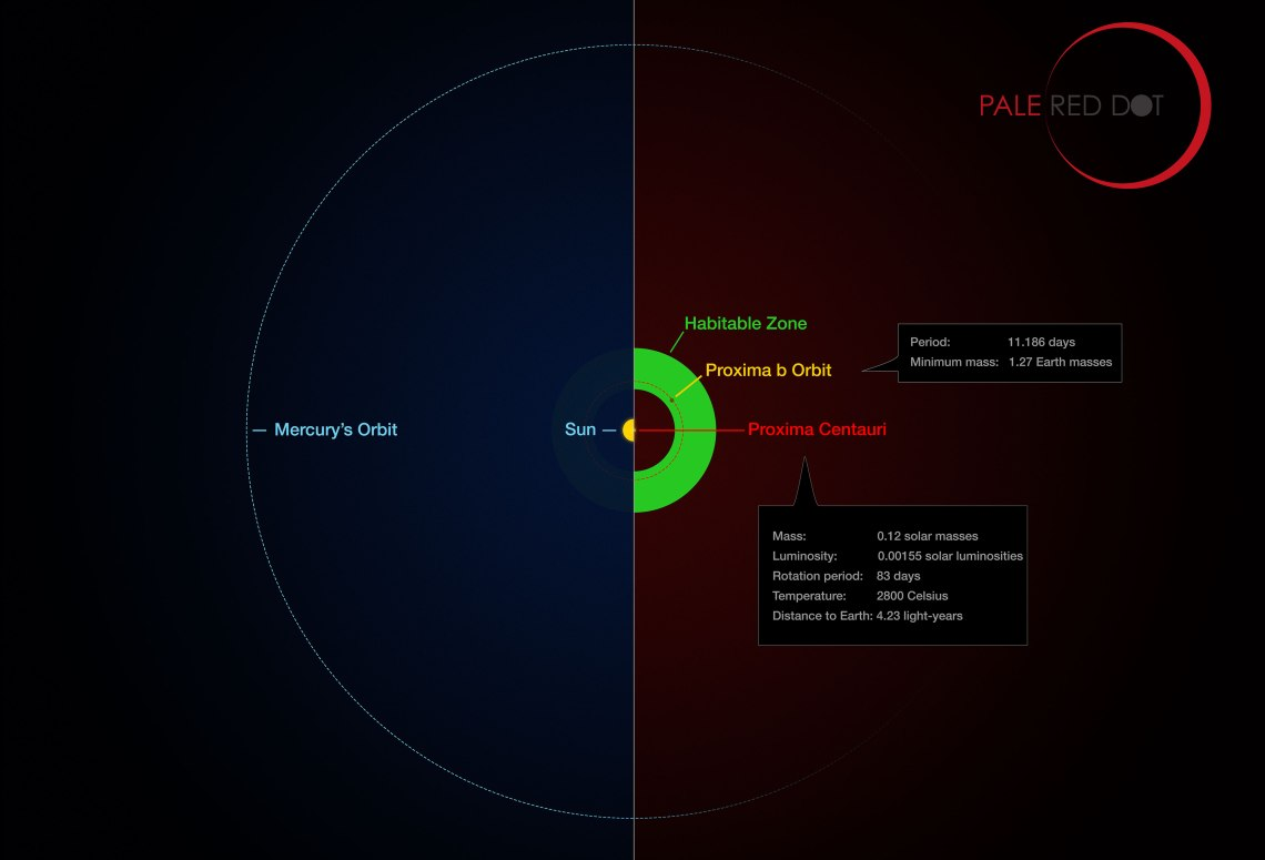 This infographic compares the orbit of the planet around Proxima Centauri (Proxima b) with the same region of the Solar System. Proxima Centauri is smaller and cooler than the Sun and the planet orbits much closer to its star than Mercury. As a result it lies well within the habitable zone, where liquid water can exist on the planet's surface. Credit: ESO/M. Kornmesser/G. Coleman