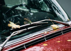 car windshield with a few leafs on it