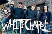 whitechapel deathcore band
