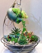 Beauty Succulents for Houseplant Indoor Decorations 29 1