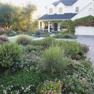 Texas Style Front Yard Landscaping Ideas 10