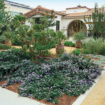 Texas Style Front Yard Landscaping Ideas 18