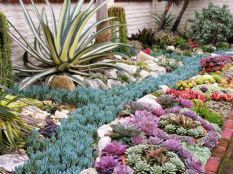 Texas Style Front Yard Landscaping Ideas 33