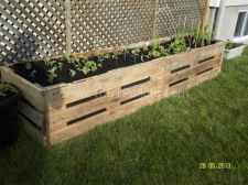 Amazing Creative Wood Pallet Garden Project 16