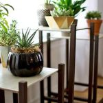 Cool Plant Stand Design Ideas for Indoor Houseplant 19