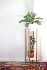 Cool Plant Stand Design Ideas for Indoor Houseplant 91