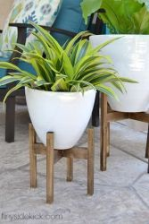 Cool Plant Stand Design Ideas for Indoor Houseplant 97