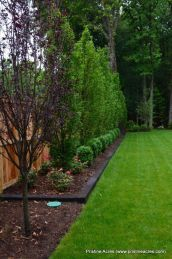 Stunning Privacy Fence Line Landscaping Ideas 12