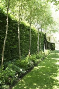 Stunning Privacy Fence Line Landscaping Ideas 67