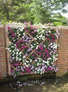 Stunning Creative Fence Ideas for Your Home Yard 46