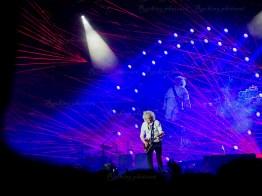 Queen, Adam Lambert srf 16-10313
