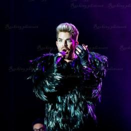Queen, Adam Lambert srf 16-3547