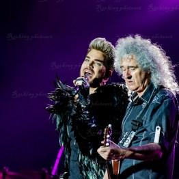 Queen, Adam Lambert srf 16-3554