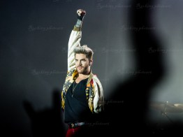 Queen, Adam Lambert srf 16-3688
