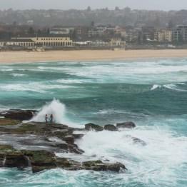 some boys defy the waves, Bondai beach