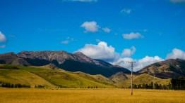 Nya Zeeland -17-254