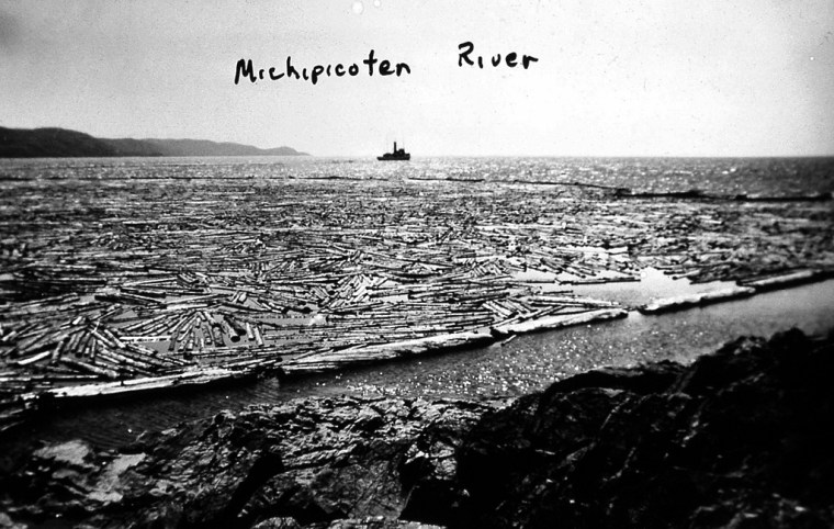 Michipicoten river-logs