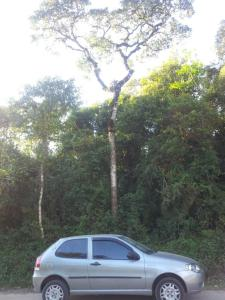 Este é meu carro. Mereceu uma foto e um descanso na sombra dessa árvore.