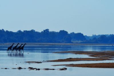 Malawi, Zambia & Botswana Tour 34