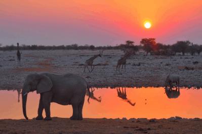 Namibia 4 (1)