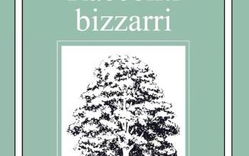 Racconti Bizzarri