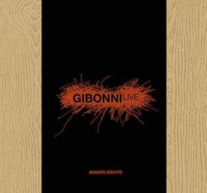 Gibonni – Acoustic: electric