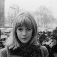Give My Love to London je naslov novega albuma Marianne Faithfull, na njem pa sodelujejo eminentni glasbeniki, kot so Nick Cave, Roger Waters, Steve Earle, Pat Leonard, Anna Calvi in Tom McRae, ki so poskrbeli za glasbo.