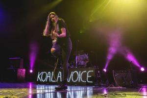 Koala Voice, foto: Kino Šiška