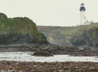 collecting rocks on ocean beaches rockhounding types of beach stones