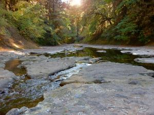 sharps creek is where to find gold in Oregon