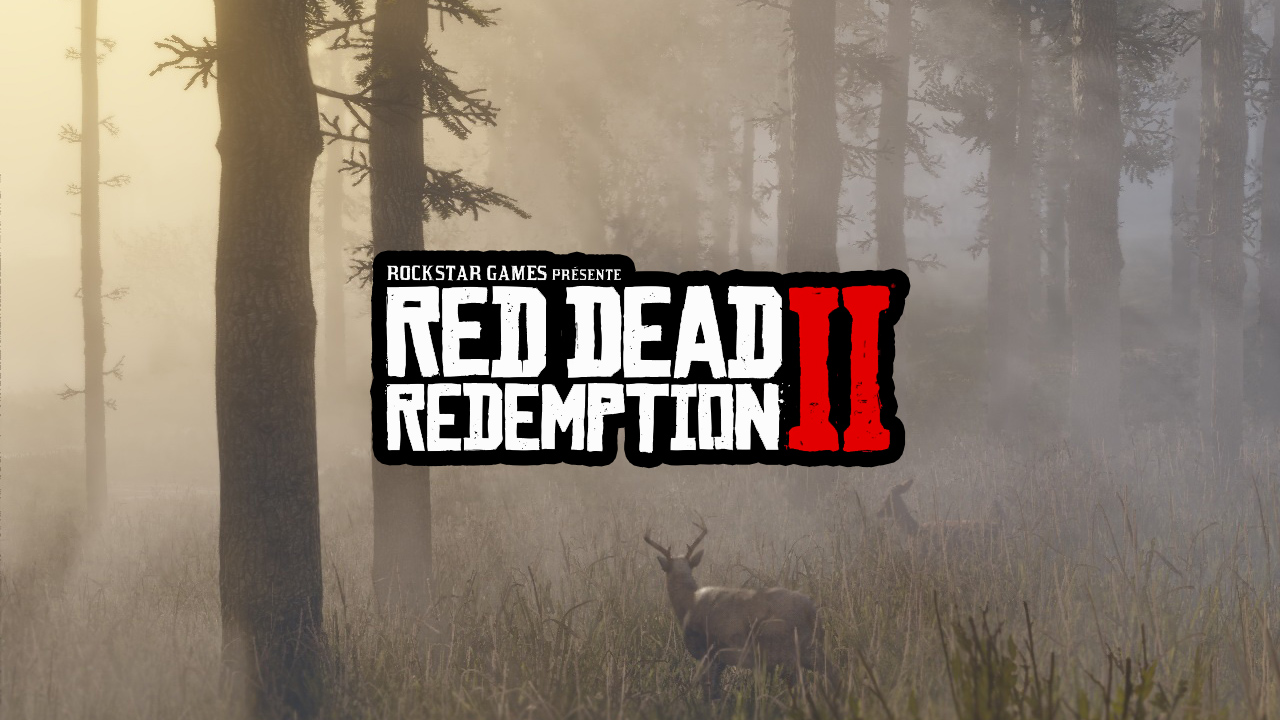 Pluis d'informations Red Dead Redemption II
