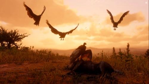 Red Dead Redemption II - Vautour