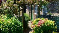 2ws2w backyard landscaping