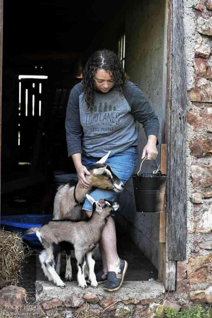 Raising Alpine Goats