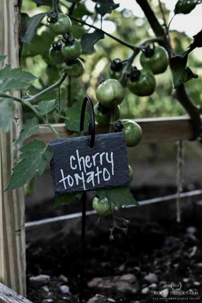 Weatherproof Hanging Slate Vegetable Plant Markers