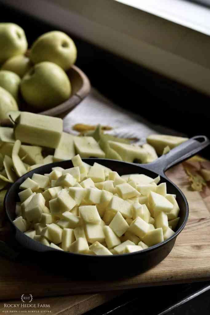 Cast Iron Skillet Apple Pie