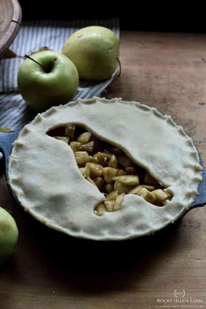 Favorite Apple Pie