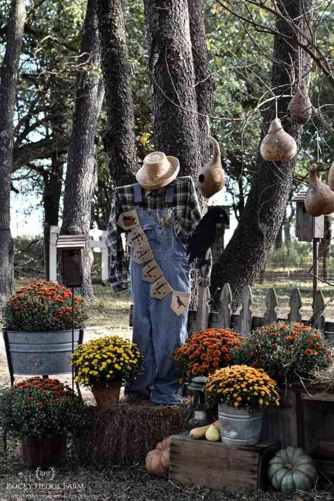 Fall Farmhouse Yard Display