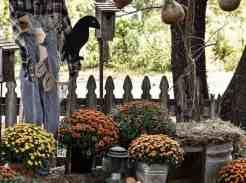 Outdoor Fall Yard Ideas