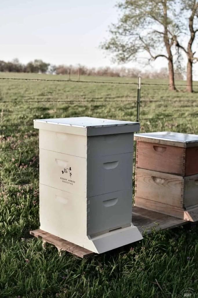 Set up Beehive